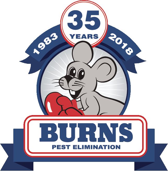 burns-logo